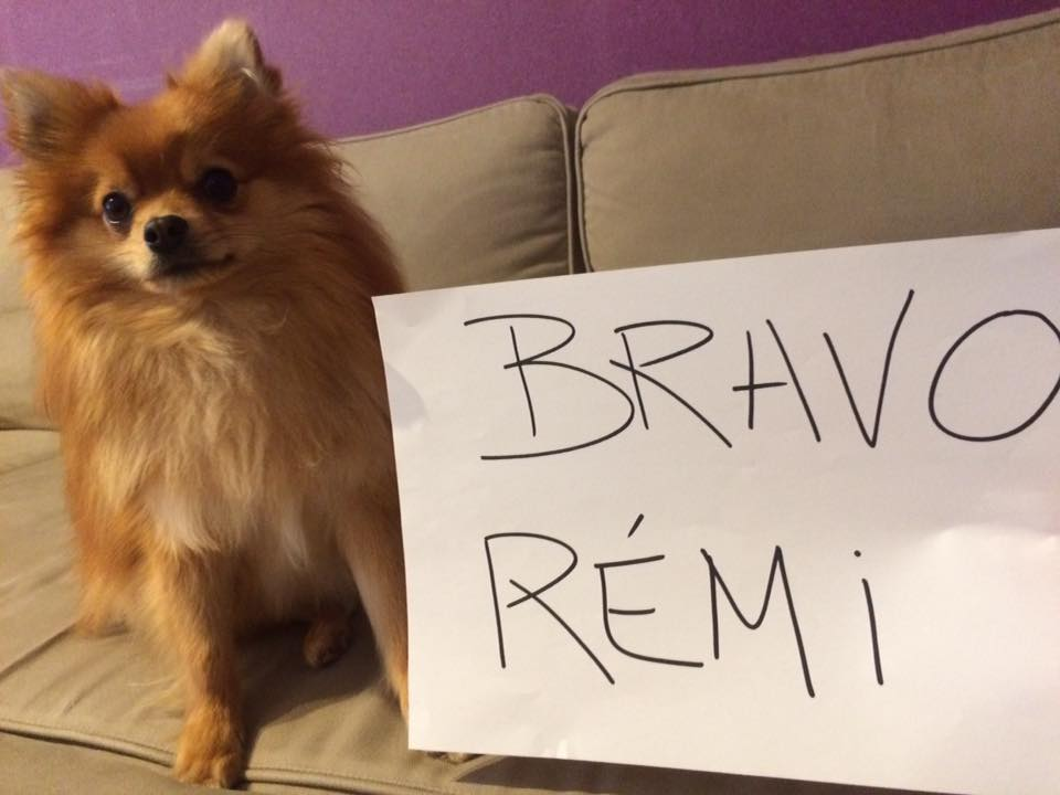 Remi se dočkal velké podpory od veřejnosti.